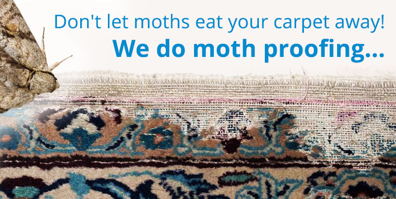 Moth prevention and proofing in carpets